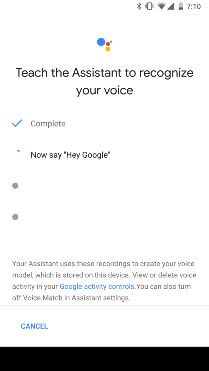 Hey Google Setting
