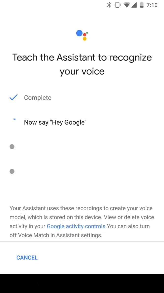 Hey Google Setting