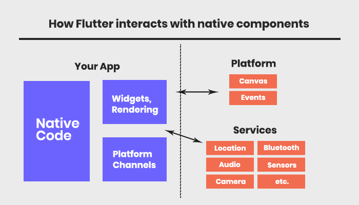 Flutter Vs. React Native