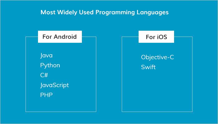 Mobile App Developer Skills
