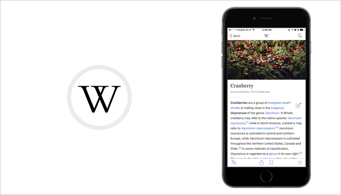Wikipedia - Learning App