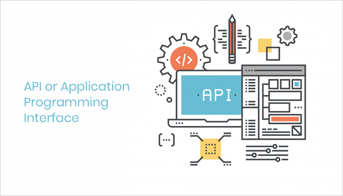 API and Application Programming Interface