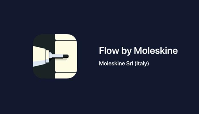 Flow by Moleskine