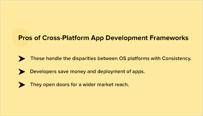 multi platform mobile app development